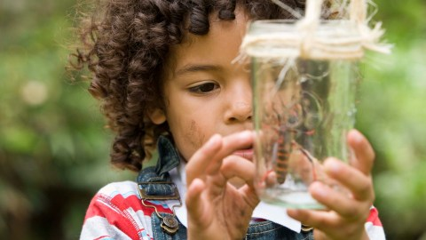 A boy has a bug in a jar after playing outside instead of playing Minecraft
