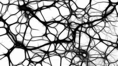 ADHD Children Born With Smaller Brains