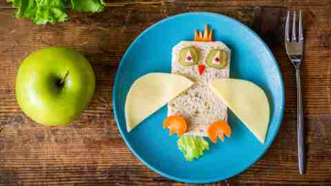 Bread, cheese, carrots, pickles arranged to look like a bird with an apple next to it makes for a healthy snack for kids with ADHD