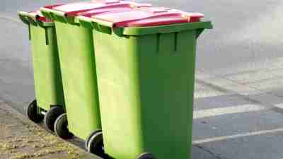 Take out the trash and find family solutions