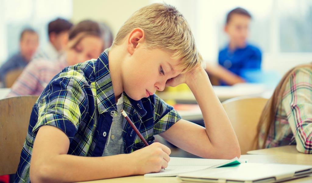 Problem behavior syndrome essay