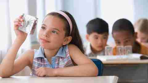 ADHD at School: Specializing Strategies to Boost Your Child's Learning