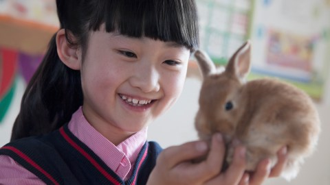 A young girl with ADHD holding a bunny as a reward for good behavior management in the classroom