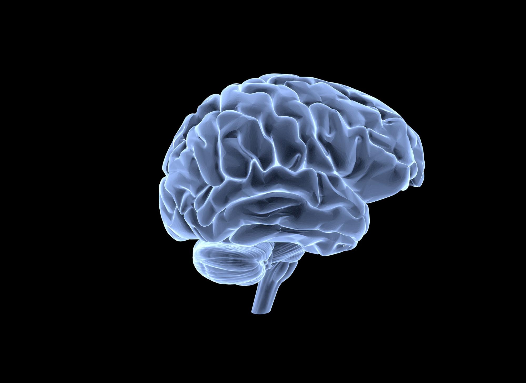 вариант подходит картинка мозговой центр этот сложный мир