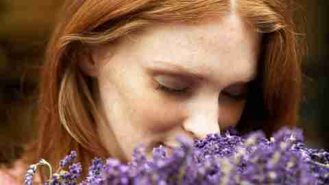 Young woman smelling lavendar, eyes closed, close-up
