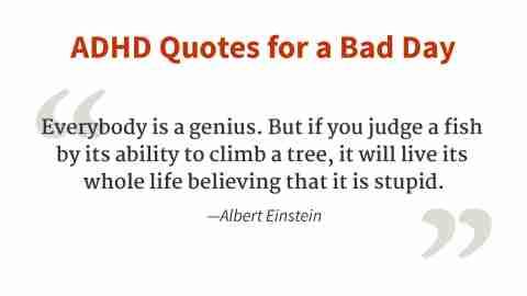 """""""Everybody is a genius."""" - Albert Einstein"""
