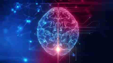 Omega-3s can help the ADHD brain
