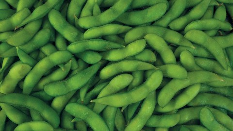 soybeans, a food with omega-3