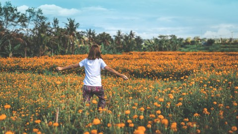 A person walks through a field of flowers as part of nature therapy for ADHD.