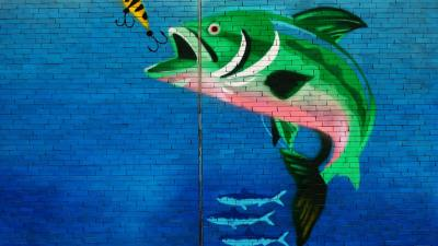 Why kids lie with ADHD: Fish stories