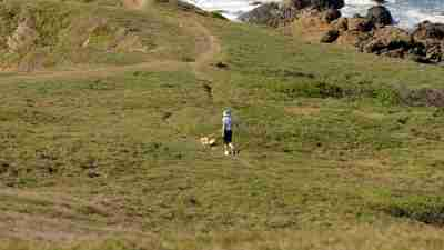 Man and dog walking on grass near a beach