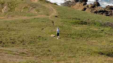 Man and dog walking on grass near a beach