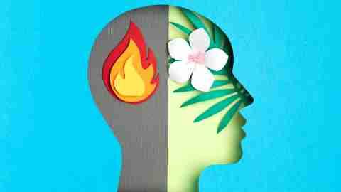 Papercut head, adult bipolar disorder concept. Mental health problems, psychology, mental illness idea