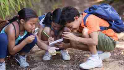 Group of friends exploring nature at natural parkland