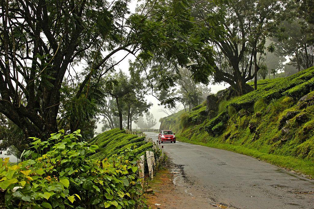 cochin to munnar road trip