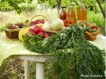 bio légumes_OK