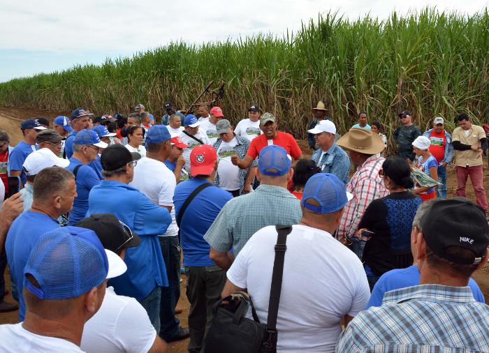 Camagüey expone resultados ante cañeros de Cuba