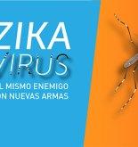 ARGENTINA. Zika, un enemigo veterano, viajero y difícil 5