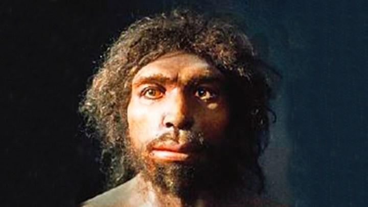 """""""El primer caníbal de nuestra Prehistoria fue el homo antecessor"""" 1"""