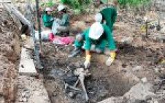 COLOMBIA. Indels, nuevas pistas genéticas sobre cuerpos de desaparecidos 4