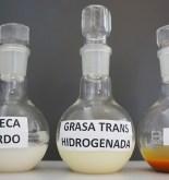 """""""Un nuevo aceite de girasol sustituirá las grasas trans y saturadas en el mercado en el 2019"""" 3"""