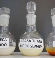 """""""Un nuevo aceite de girasol sustituirá las grasas trans y saturadas en el mercado en el 2019"""" 6"""
