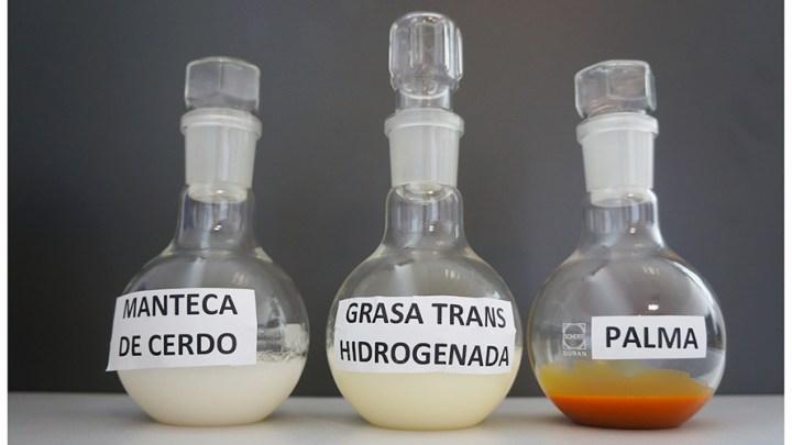 """""""Un nuevo aceite de girasol sustituirá las grasas trans y saturadas en el mercado en el 2019"""" 1"""