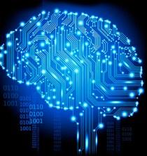 Medir la inteligencia: un debate sin fin 4