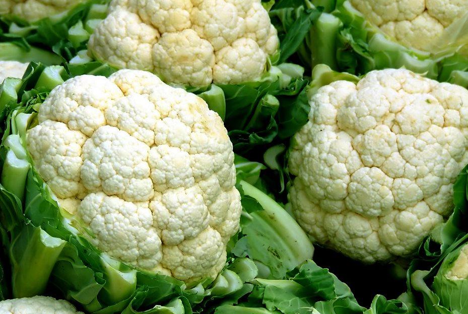 ok google, ¿puedes comer brócoli en la dieta cetosis?