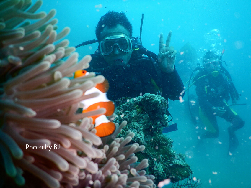 open water exam owe pramuka island 12