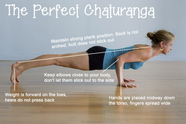 push up yoga chaturanga