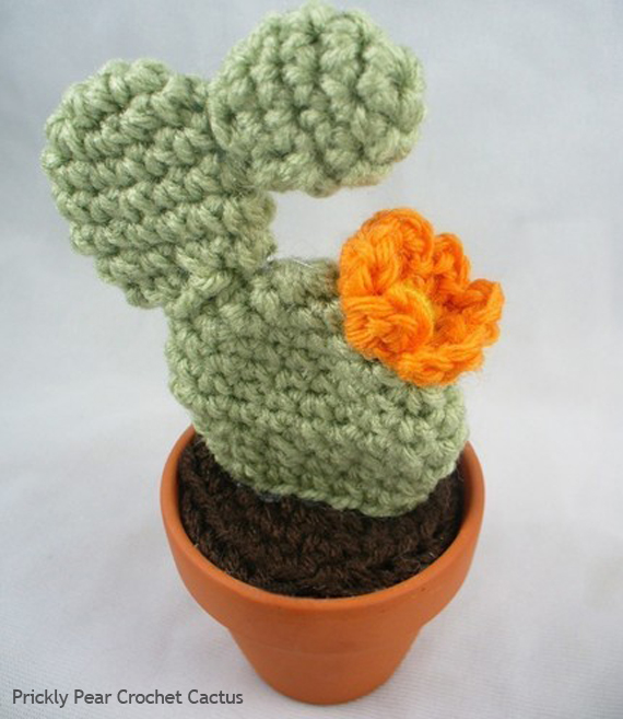 Crocheted Cacti Giveaway!