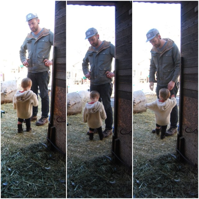 A Denver Home Companion | father and child