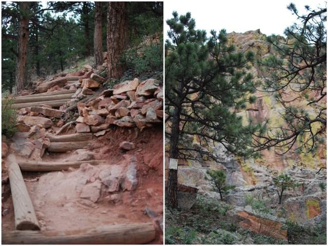 A Denver Home Companion   sanitas boulder