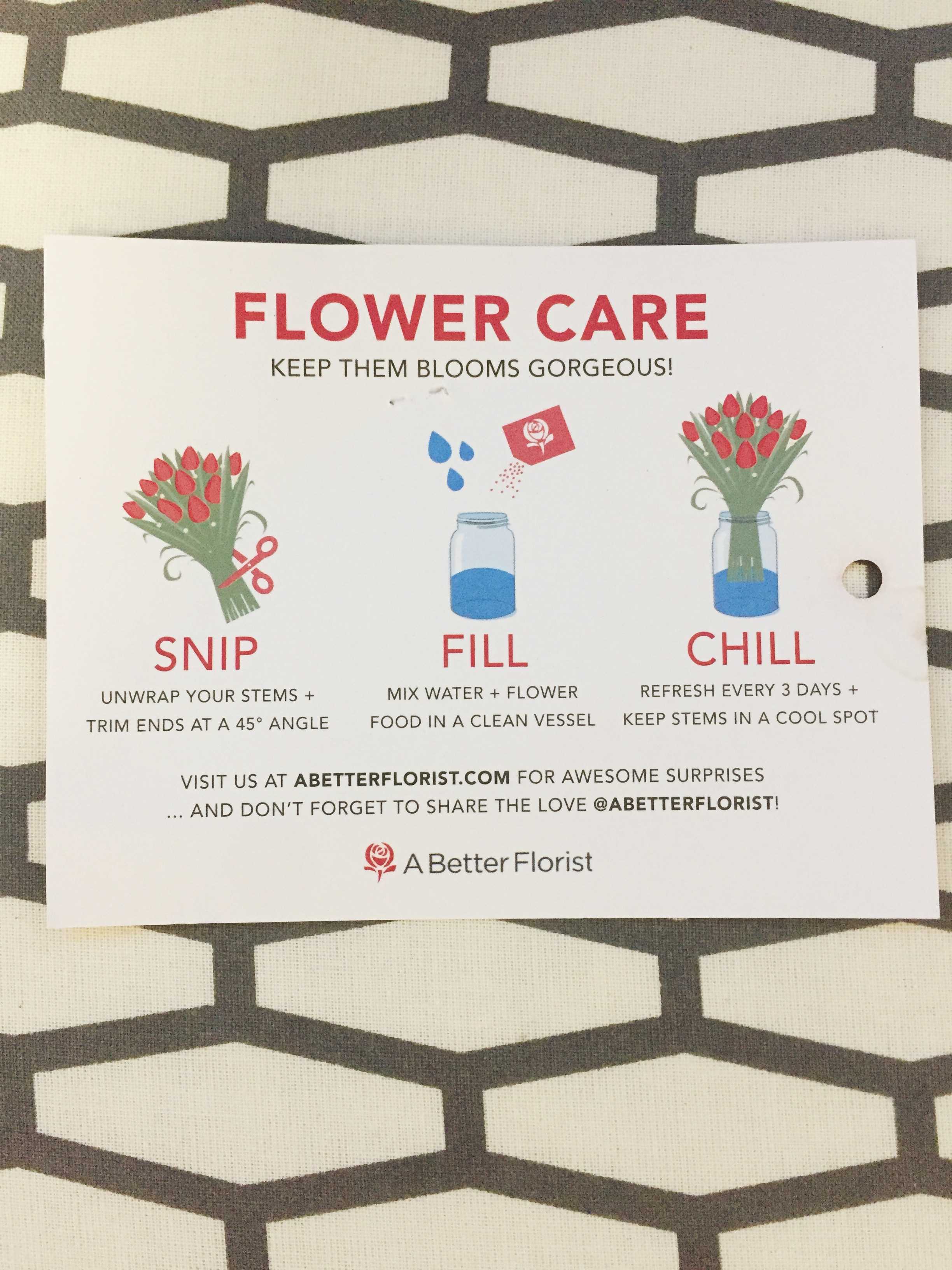 Blooms For The Home From A Better Florist