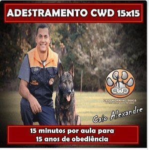 ADESTRAMENTO-CWD-15X15-compressor