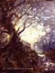Gawains wildwood journey