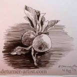 Apples in ink