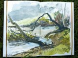 Pen and wash - River Coly at Colyton