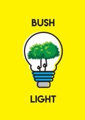 08-Bush-Light-Angela-Higgins