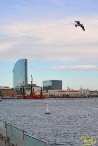 A pocos metros de la playa de la Barceloneta, se levanta una maga estructura de 98,8 metros de altura en forma de vela.