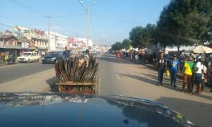 carute Antananarivo2
