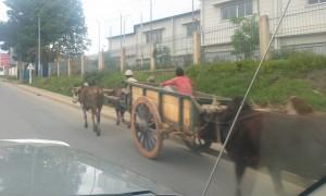 carute Antananarivo3