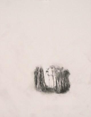"Iris, graphite on paper, 12"" x 9"", 2011"