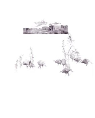 Juvenile Turkeys, ballpoint pen on paper, 22″ x 17″, 2009