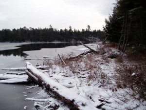 Wintery time at Queer Lake