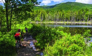 Mountain Biking by Nancie Battaglia