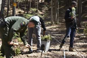 DEC Forest Rangers working with YENN and Adirondack Wild