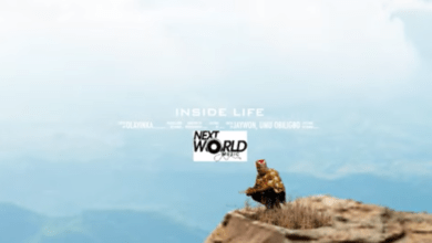 "Photo of [Video] Jaywon – ""Inside Life"" ft. Umu Obiligbo"