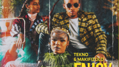 "Photo of Tekno x Mafikizolo – ""Enjoy"" (Remix)"